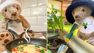 Teddy doing fun free and healthy activities like gardening and cooking
